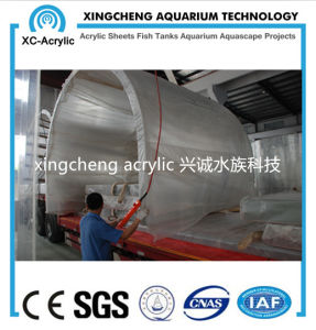 Customized Lucite Material Acrylic Tunnel of Oceanarium Project pictures & photos