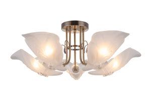 Home Decor Ceiling Light