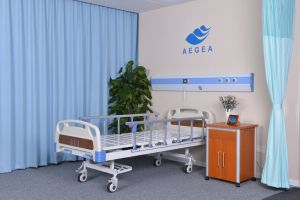 Rent Electric and Manual Remote Multifunctional Hospital Bed (AG-BY103) pictures & photos