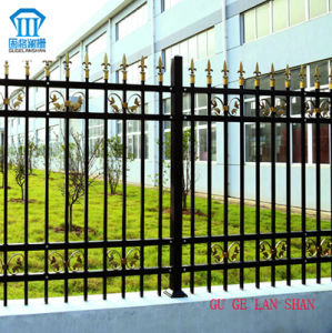 Rust-Proof/Antiseptic/High Quality Security Steel Fence for Garden pictures & photos
