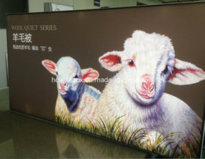 Aluminum Extrusions Light Box LED Panel Lighting (Model 2800) ! pictures & photos