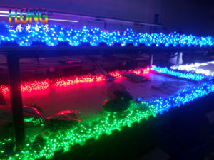 Multicolor Flexibility LED Strip Light 14.4W SMD5050 pictures & photos