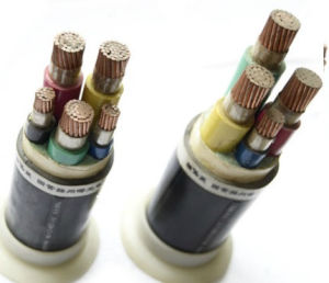 XLPE Insulated Armor Computer Cable pictures & photos