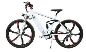 Pedal Assist Electric Bicycle E Bicycle with Hidden Portable Battery pictures & photos