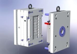 Custom Injection Mould (BR-MD-010) pictures & photos