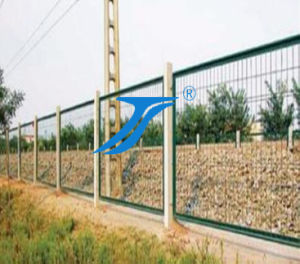 Welded Wire Mesh/Stainless Steel Wire Mesh pictures & photos