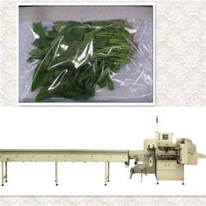 Vegetable Packaging Machine with Feeder pictures & photos