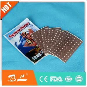 Capsicum Hot Pain Relief Plaster Chinese Balm Patches Size 12 X 18cm pictures & photos