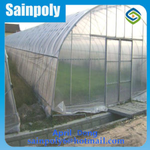 Low Cost Agricultural Plastic Film Single Span Greenhouse pictures & photos