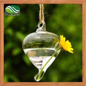 Creative Q Shape Hanging Glass Vase pictures & photos