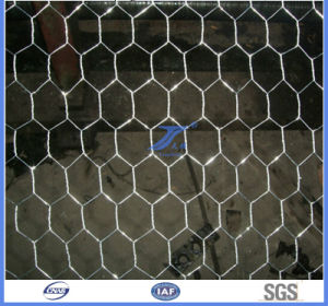Hexagonal Wire Mesh with High Quality pictures & photos
