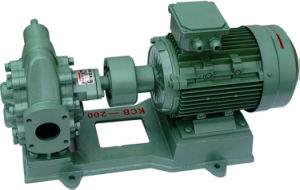 High Quality with Ex Motor Iron Gear Pump pictures & photos