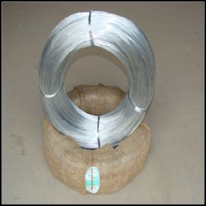 Hot-Dipped and Electro Galvanized Wire pictures & photos