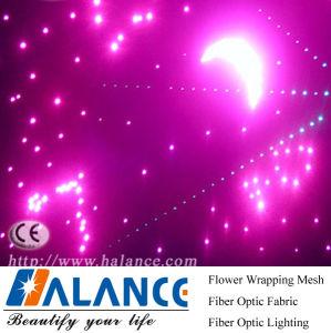 Fibre Optic Star Ceiling for Museum Decoration (FRP-045)