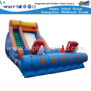 Best Quality Inflatable Bouncer Slide for Sale (HD-9406) pictures & photos