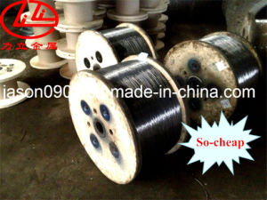 Oil Temper Steel Wire, Steel Wire, Stainless Steel Wire, Galvanized Steel Wire pictures & photos