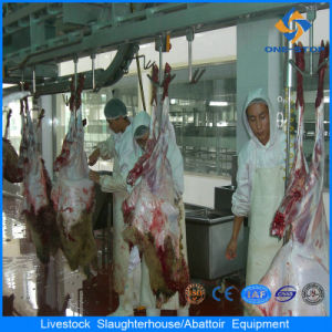 Professional Halal Style Sheep Slaughtering Equipment with CE Certificate pictures & photos