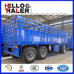 2 or 3 Axle 20-40 Tons Cargo Box Full Trailer pictures & photos