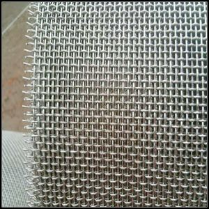 Stainless Steel Woven Wire Mesh Screen (L-56) pictures & photos