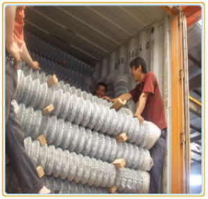 Electro/Hot Dipped Galvanized Chain Link Fence (Manufacturer) pictures & photos