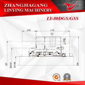 Mechanical Seal (LY-80DGS, GSS) pictures & photos