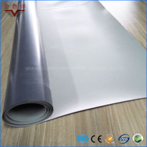 Polyester Reinforced PVC Waterproof Membrane for Roof Garden pictures & photos