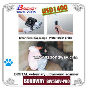 Digital Wrist-Top Veterinary Ultrasound Scanner Swine Ultrasound Small Animal Ultrasound pictures & photos