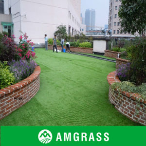 Soft Decoration Pet Artificial Ornamental Grass (AMU415-40L) pictures & photos
