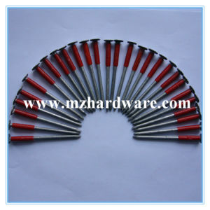 Hot Dipped Galvanized Clout Nail/Clout Roofing Nail/Felt Nail pictures & photos
