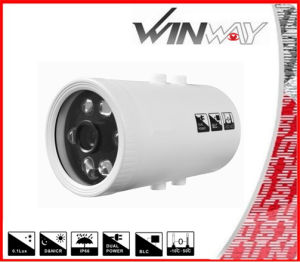 Outdoor Array Waterproof LED Analog Security Bullet IR CCTV Camera Tk-8239 USA Chips (SSA-550)