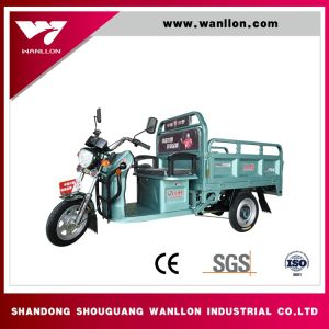800W Fashionalbe 3 Wheel Electric Tricycle Taxi for Passenger pictures & photos