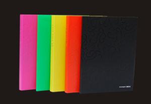 A4 Clip Folder (P8101)