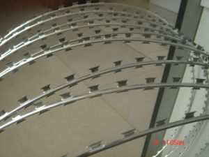 Galvanized Iron Razor Barbed Wire From Professional Factory pictures & photos