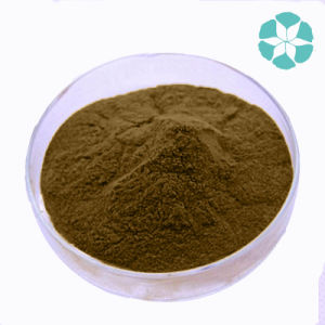 St. John′s Wort Extract / Hypericum Perforatum Extract / Hypericin pictures & photos