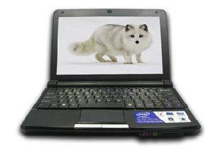 Black 10 Mini Inch Laptop Computer (N01N)