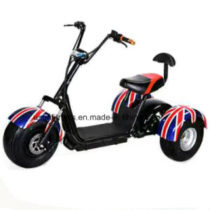 Cheap Citycoco Harley Scooter with Double Seats pictures & photos