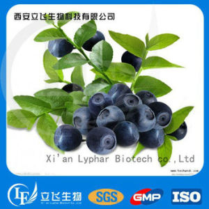 100% Natural Blueberry Extract Pterostilbene Powder