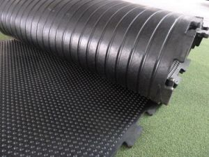 Rubber Stable Mat/Cow Flooring Mats/Cow Stall Rubber Mats Cushions pictures & photos