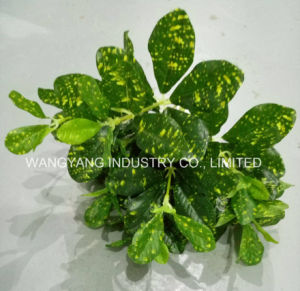 Evergreen Artificial Synthetic Fake Red Leaves pictures & photos