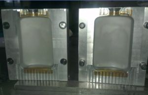 Bottle Blowing Mould pictures & photos
