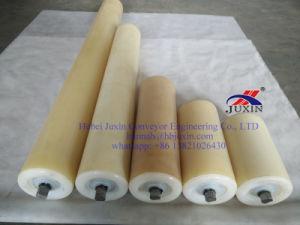 Conveyor Roller/Nylon Roller, HDPE Roller, Plastic Roller pictures & photos