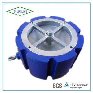 Cast Iron Wafer Type Silent Check Valve pictures & photos
