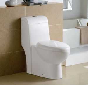 Siphonic One-Piece Water Closet CE-T209 pictures & photos