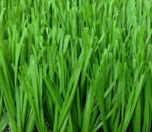 High Quality Monofilament Artificial Grass/Turf for Sports pictures & photos