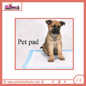 Disposable Pet Pads Eco-Friendly Print Dog pictures & photos