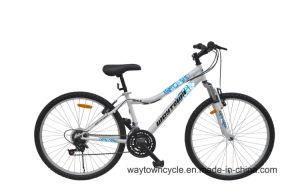 MTB Bike (24MTB1506)