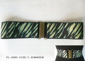 Fashion Elastic Belt Fl-0580