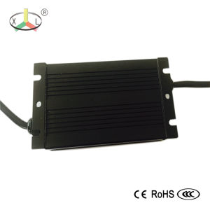 Eb Digital Electronic Ballast 250W for Public Lighting/ Pole Lighting/ Street Lighting / Garden Lighting/ Port pictures & photos