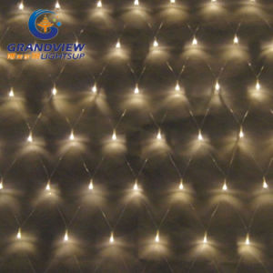 2m Width Warm White Light LED Net Light with 8-Mode pictures & photos