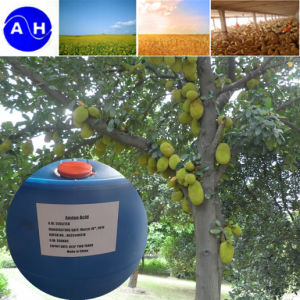 High Absorbability Amino Acid Liquid Vegetable Source pictures & photos